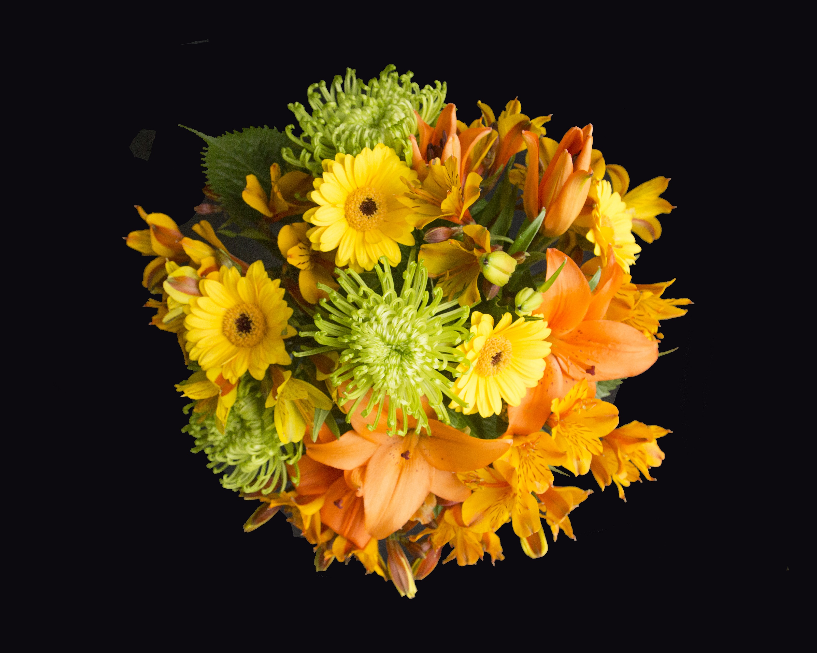 Florist Choice - Bright - Flowers On Bank